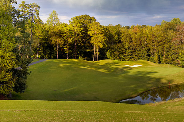 The tee shot at number fourteen, The Club at Stoney Creek